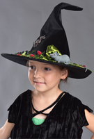 halloween_hat_black_big_mouse_sml